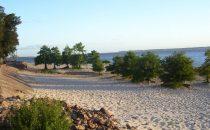 Peligran las playas de San Gregorio