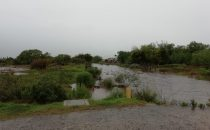 Lluvias Caídas , 95 mm en la ciudad