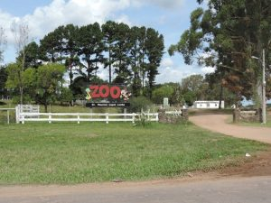 zoologico 2