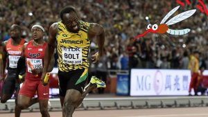 Bolt _ rio2016