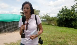 "Undated file picture of Spanish journalist Salud Hernandez, columnist for the Colombian newspaper El Tiempo and correspondent for the Spanish newspaper El Mundo, who went missing in El Tarra, Colombia on May 21, 2016. The Colombian armed forces began to search on May 22, 2016 for Spanish journalist Salud Hernandez after her alleged disappearance while on assignment in the municipality of El Tarra, Norte de Santander department, in the Catatumbo area, where guerrilla groups and criminal gangs are active.  / AFP PHOTO / AFP or licensors / Alejandra Vega HO / RESTRICTED TO EDITORIAL USE - MANDATORY CREDIT ""AFP PHOTO /EL TIEMPO / ALEJANDRA VEGA"" - NO MARKETING - NO ADVERTISING CAMPAIGNS - DISTRIBUTED AS A SERVICE TO CLIENTS"