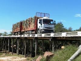 upm_puente_madera_cordobes